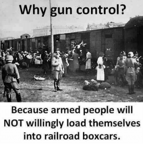 why-gun-control-because-armed-people-will-not-willingly-load-31093444.png